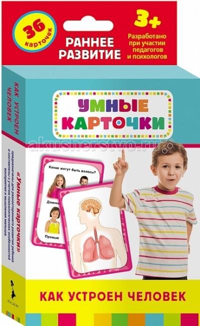 Раннее развитие Росмэн Развивающие карточки Как устроен человек раннее развитие росмэн развивающие карточки учимся читать page 5