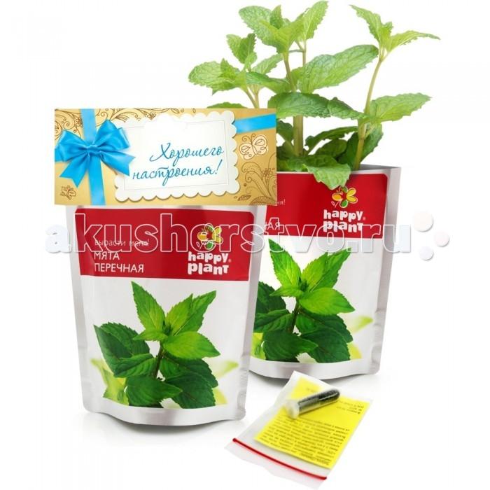 Наборы для выращивания Happy Plant Набор для выращивания Перечная мята