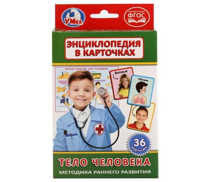Раннее развитие Умка Карточки Тело человека гуиди винченцо тело человека занимательная энциклопедия для детей