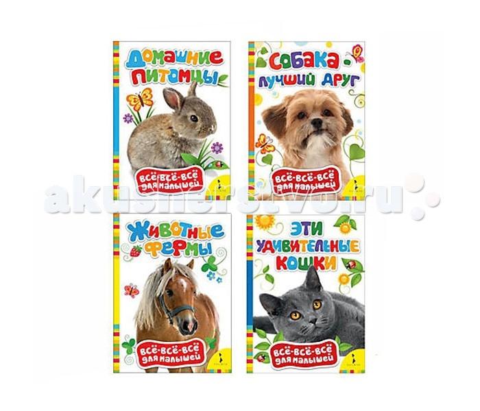 Раннее развитие Росмэн Комплект из 4 обучающих книг о домашних животных