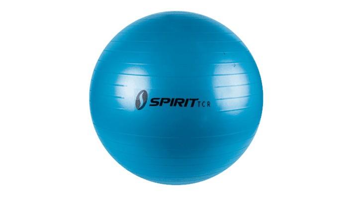 Купить Мячи, Hasttings Гимнастический мяч 55 см M-01