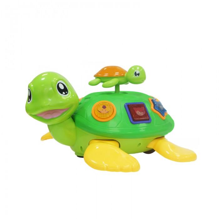 Электронные игрушки My Angel Движущаяся черепаха с малышом Кукутики, Электронные игрушки - артикул:557666