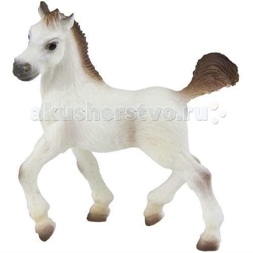Игровые фигурки Bullyland Фигурка Арабский жеребенок 8 см игровые фигурки bullyland фигурка лошадь ольденбургской породы 14 5 см