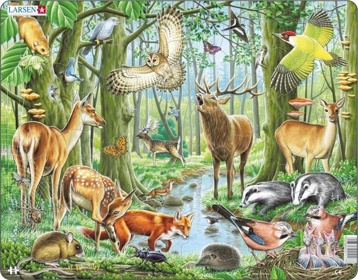 Пазлы Larsen Пазл Европейский лес larsen пазл европейский лес 40 деталей larsen