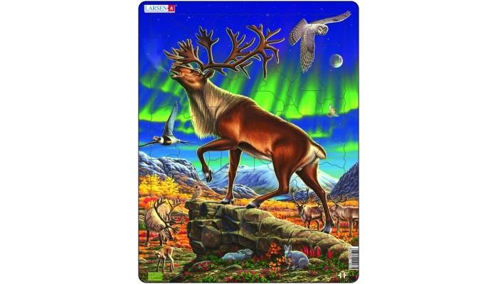 Пазлы Larsen Пазл Северный олень larsen пазл европейский лес 40 деталей larsen