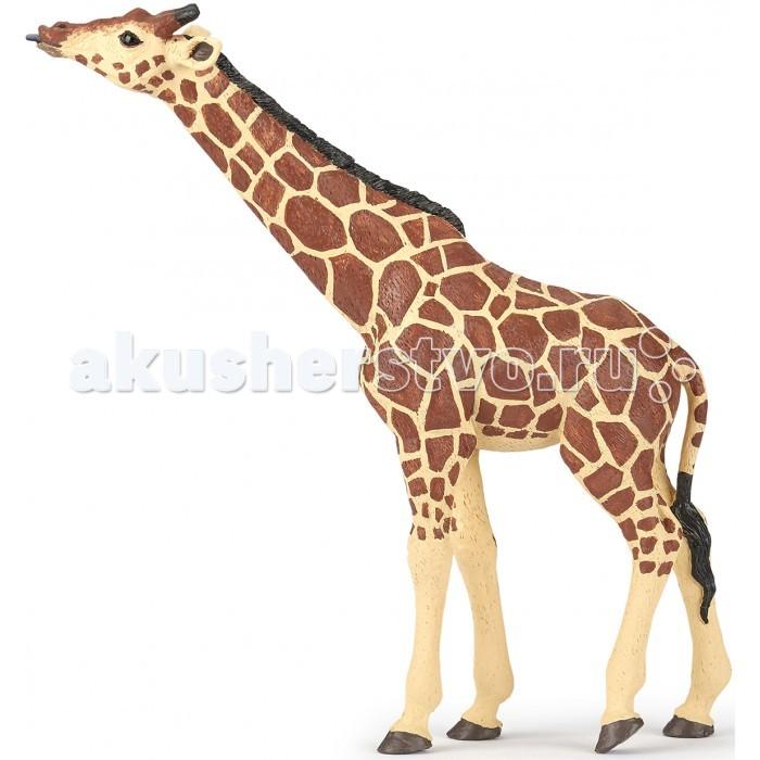 Игровые фигурки Papo Игровая фигурка Жираф с поднятой головой