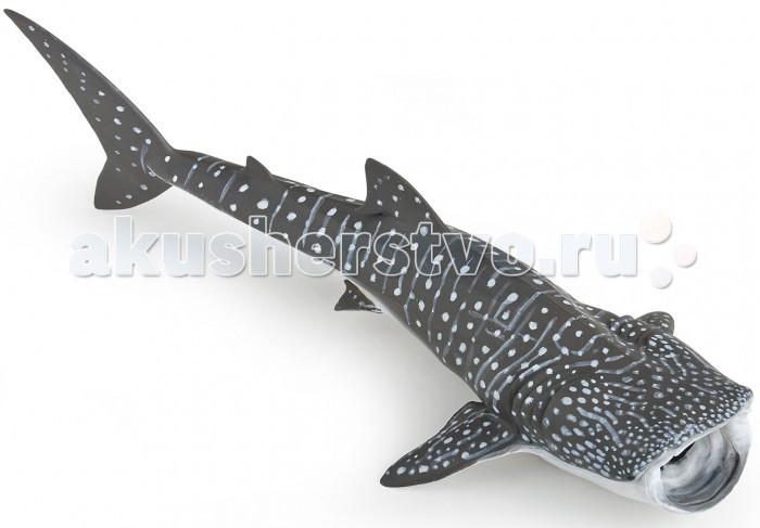 Игровые фигурки Papo Игровая фигурка Китовая акула игровые фигурки papo игровая фигурка принцесса на коньках