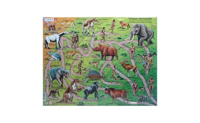 Картинка для Larsen Пазл От обезьяны до человека