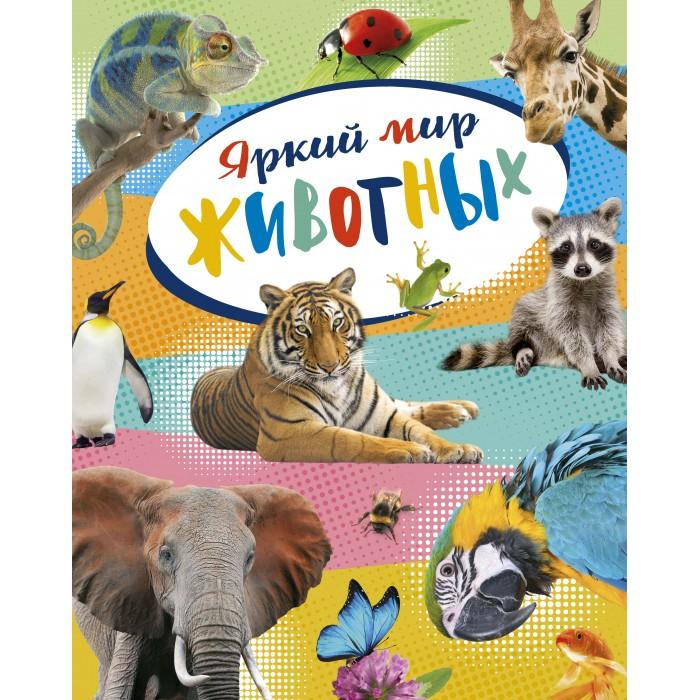 Картинка для Махаон Энциклопедия Яркий мир животных