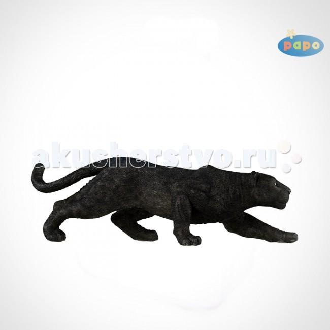 Игровые фигурки Papo Игровая реалистичная фигурка Черная пантера  игровые фигурки schleich игровая фигурка черная пантера