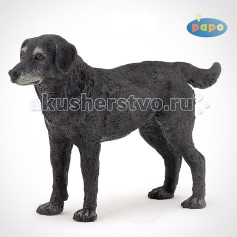 Игровые фигурки Papo Игровая реалистичная фигурка Черная собака Касси игровые фигурки 1 toy алиса фигурка арик сапожков 22 см