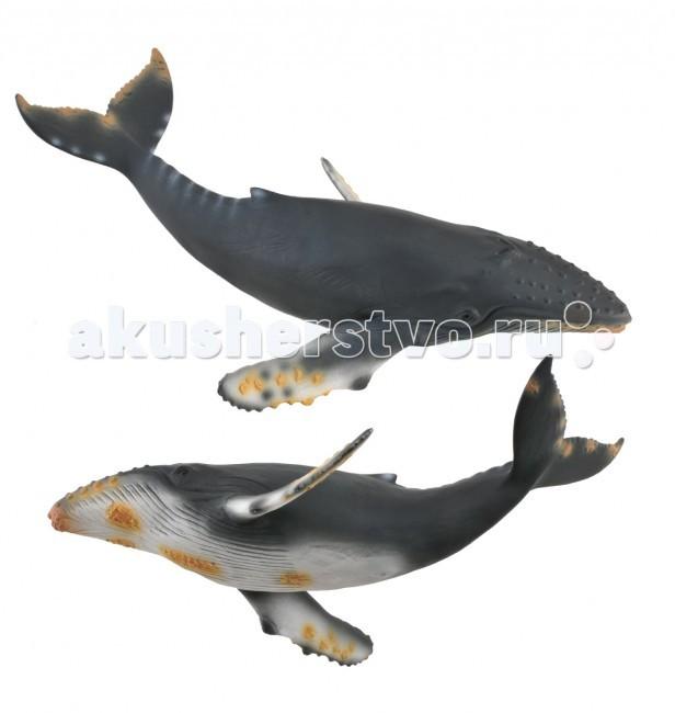 Игровые фигурки Gulliver Collecta Фигурка Горбатый кит XL игровые фигурки gulliver collecta фигурка горбатый кит xl