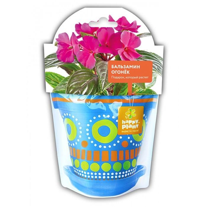 Наборы для выращивания Happy Plant Бальзамин огонек набор для выращивания семена бальзамин том самб белый 0 1г