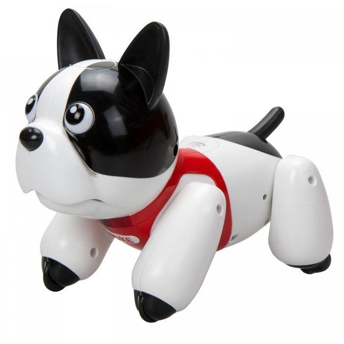 Купить Роботы, Silverlit Робот Собака Дюк 88557