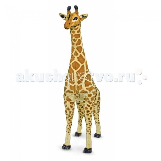 Мягкая игрушка Melissa &amp; Doug Большой Жираф 140 смБольшой Жираф 140 смМягкая игрушка Melissa & Doug Большой Жираф 140 см - воистину огромен! Его рост около 140 см. Мягкий плюшевый гигант сделает любой интерьер ярким и необычным, добавит экзотики в детскую комнату.   Жираф сделан с большим вниманием к деталям. Компания Melissa&Doug позаботилась о том, чтобы сделать игрушку максимально похожей на настоящее животное. Малыш сможет поближе познакомиться с этими африканскими животными и обязательно полюбит Большого жирафа.   Мягкая игрушка компании Melissa & Doug отличается высоким стандартом качества и безопасности детских товаров. Игрушка мастерски выполнена из материалов высочайшего качества. Не деформируется и не теряет внешний вид при машинной стирке.<br>