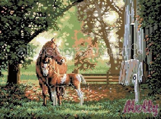 Molly Мозаичная картина Лошадь с жеребенком 40х50 смМозаичная картина Лошадь с жеребенком 40х50 смМозаичная картина Molly Лошадь с жеребенком 28 цветов - оригинальный набор, позволяющий создать первую картину, благодаря поэтапной выкладке мозаикой полотна.    В наборе:    Тканевый холст с клеевым слоем и с нанесенной схемой рисунка;  Металлический пинцет;  Пластиковый контейнер для элементов мозаики;  Специальный карандаш;  Клей-липучка для карандаша;  Комплект разноцветных мозаичных элементов диаметром 2,5 мм;   Размер: 40 х 50 см Количество цветов: 28 Уровень сложности: сложный<br>