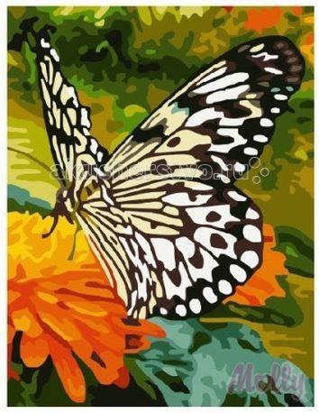 Картины по номерам Molly Картина по номерам Бабочка 30х40 см molly картина по номерам бабочка