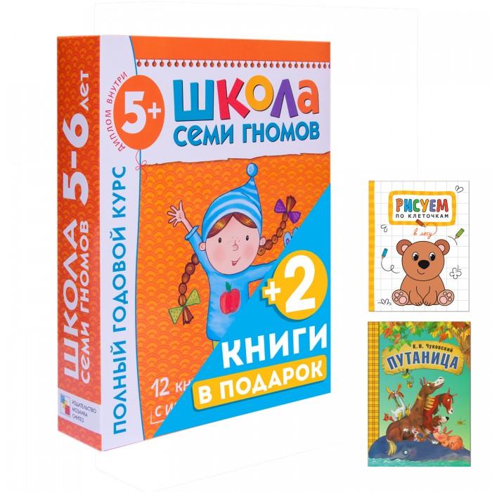 Школа 7 гномов Полный годовой курс 5-6 лет и 2 книги внутри от Школа 7 гномов