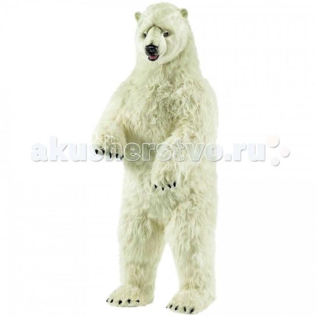 Мягкая игрушка Hansa Белый медведь стоящий 100 смБелый медведь стоящий 100 смМягкая игрушка Hansa Белый медведь стоящий 100 см   Игрушки Hansa изготовлены из искусственного меха очень приятного на ощупь, внутри имеют титановый каркас. Наличие каркаса позволяет изменять положение лап и туловища, а также поворачивать голову. Игрушки полностью копируют оригинал и могут быть выполнены в натуральную величину. На крупно габаритных игрушках ослик, лошадка и проч., размером от 1 м можно сидеть верхом.  Благодаря прочному каркасу, они выдерживают вес до 65-70 кг.  Компания Hansa была основана в 1972 году на Филиппинах мистером Хансом Акстельмом и в прошлом году отметила свой 40 летний юбилей. 7 мировых обществ охраны природы признали мягкие игрушки фирмы Hansa самыми натуралистичными моделями животных.  Мягкие игрушки Hansa: абсолютно реалистичные жирафы, слоны, коалы и медведи, изготовленные из экологически чистых материалов, сертифицированные как детские игрушки, могут так же стать великолепным украшением любого интерьера – от оформления комнаты до торгового зала, офиса, ресторана, шоу-программы или праздничной вечеринки.  Игрушки Hansa идеальны для модных интерьеров в африканском или японском стиле. Благодаря своей реалистичности игрушки Hansa имеют огромное природоохранное значение - они позволяют любоваться дикими животными, сохраняя им жизнь. Отдельная линия анимированных декоративных композиций дает возможность создавать эффектные экспозиции для выставок, презентаций, витрин и проч. Мягкие анимированные игрушки нередко делаются на заказ, для конкретных интерьеров и событий. В ассортименте Hansa игрушки более 3000 наименований: от райских птичек и мышей 5 см до слонов и жирафов 4.5 м.<br>