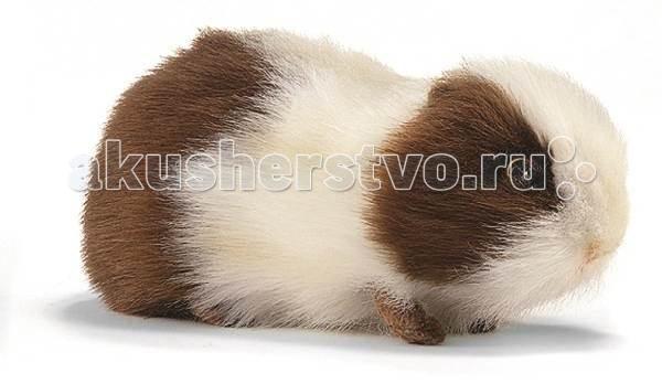 Мягкие игрушки Hansa Морская свинка бело-коричневая 20 см мягкие игрушки hansa обезьянка сидящая палевая 20 см