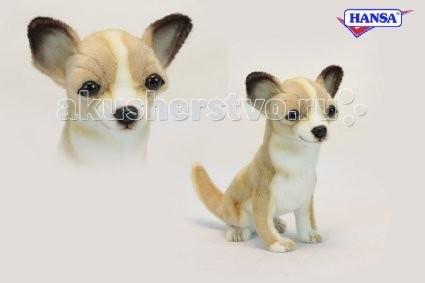 Мягкие игрушки Hansa Собака породы Чихуахуа 31 см мягкие игрушки hansa собака породы бишон фризе 30 см