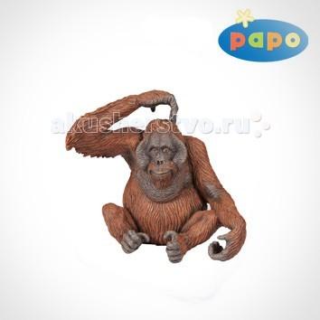 Игровые фигурки Papo Игровая реалистичная фигурка Орангутанг