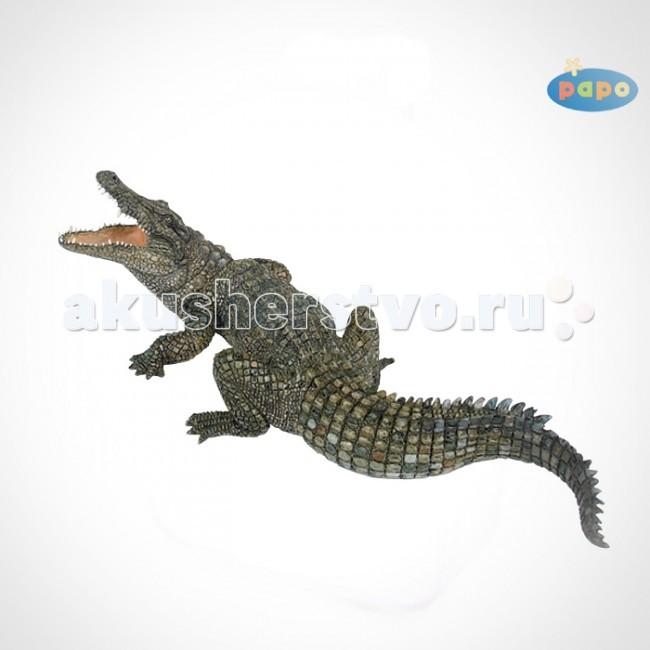 Игровые фигурки Papo Игровая реалистичная фигурка Нильский крокодил