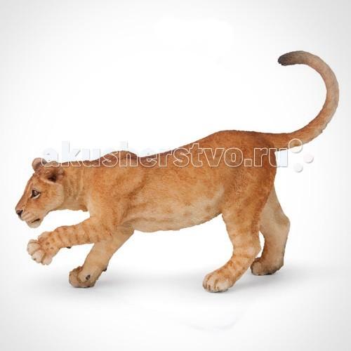 Игровые фигурки Papo Игровая реалистичная фигурка Молодой лев