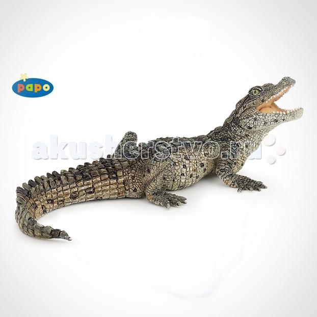 Игровые фигурки Papo Игровая реалистичная фигурка Крокодильчик
