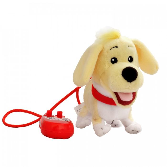 Фото - Электронные игрушки Shokid Щенок интерактивный Eddie 15 см радиоуправляемые игрушки 1 toy интерактивный радиоуправляемый щенок робот дружок