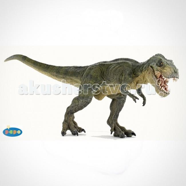 Papo Игровая реалистичная фигурка Зелёный тиранозавр РексИгровая реалистичная фигурка Зелёный тиранозавр РексИгровая реалистичная фигурка Зелёный тиранозавр Рекс 55027  Ручная роспись. Все фигурки Papo проходят тщательную подготовку и обработку, поэтому они крепкие и долговечные.  Материал: высококачественный полимерный материал.<br>