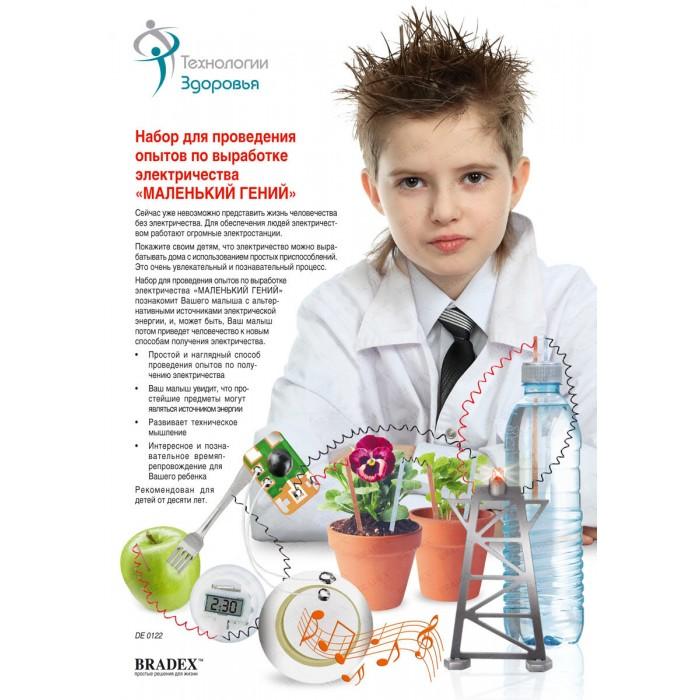 Купить Наборы для опытов и экспериментов, Bradex Набор для проведения опытов по выработке электричества Маленький Гений
