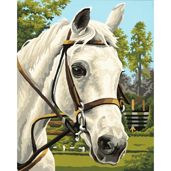 Картины по номерам Schipper Картина по номерам Белая лошадь 24х30 см