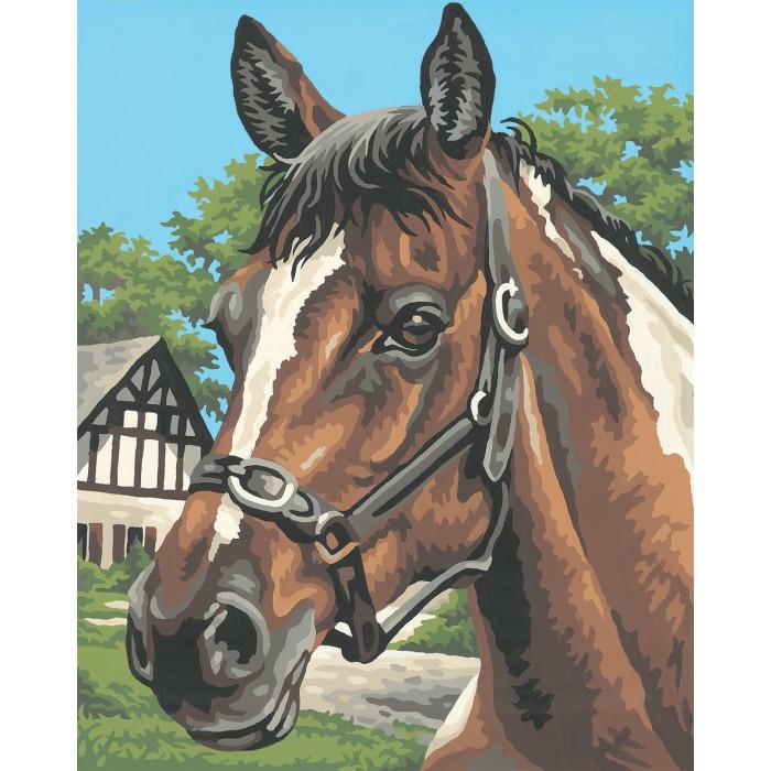 Творчество и хобби , Картины по номерам Schipper Картина по номерам Лошадь 24х30 см арт: 67190 -  Картины по номерам