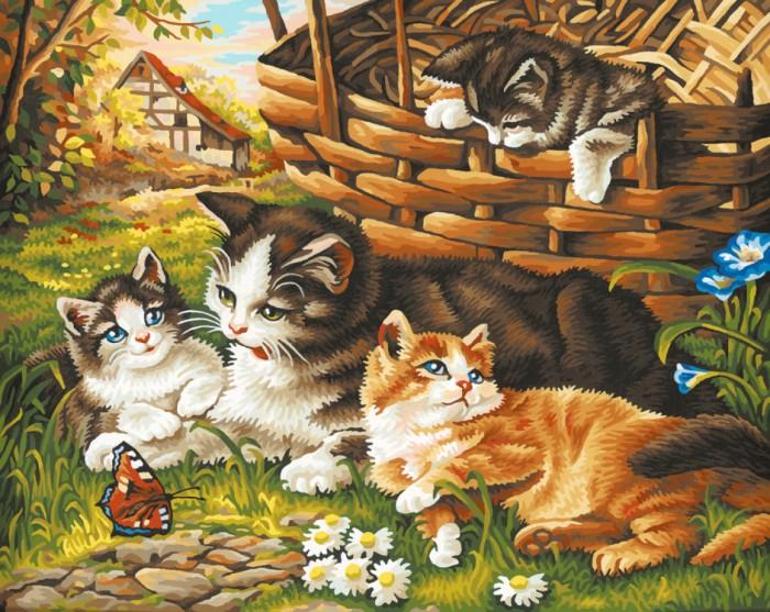 Творчество и хобби , Картины по номерам Schipper Картина по номерам Семейство кошачьих 40х50 см арт: 67378 -  Картины по номерам