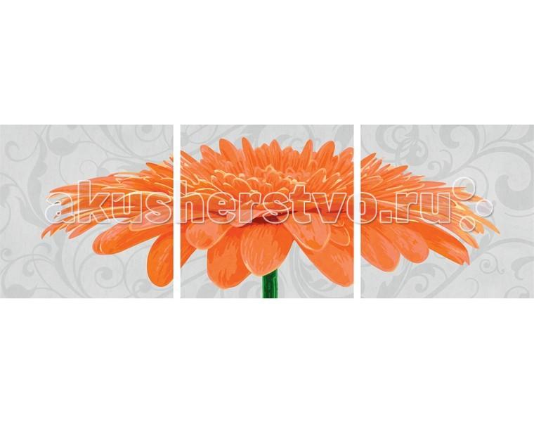 Schipper Картина по номерам Триптих Хризантема оранжевая 40х120 см