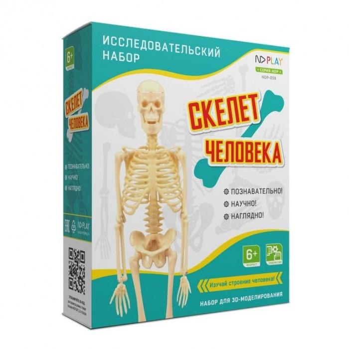 Наборы для опытов и экспериментов ND Play Исследовательский набор Скелет человека