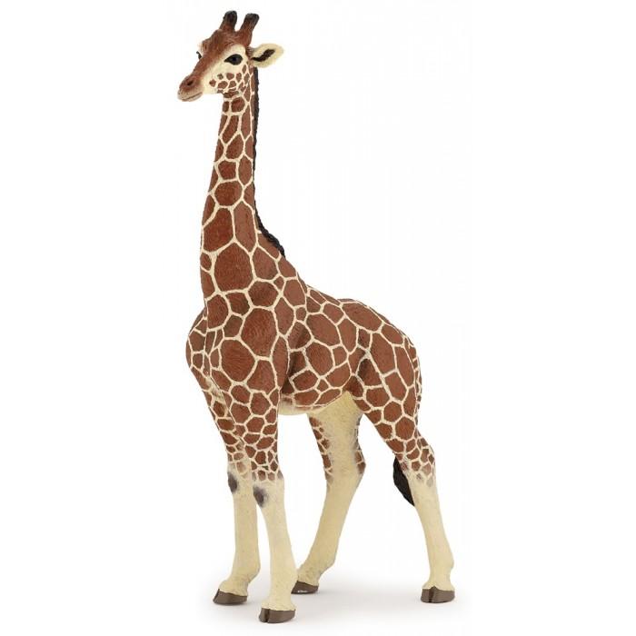 Papo Жираф