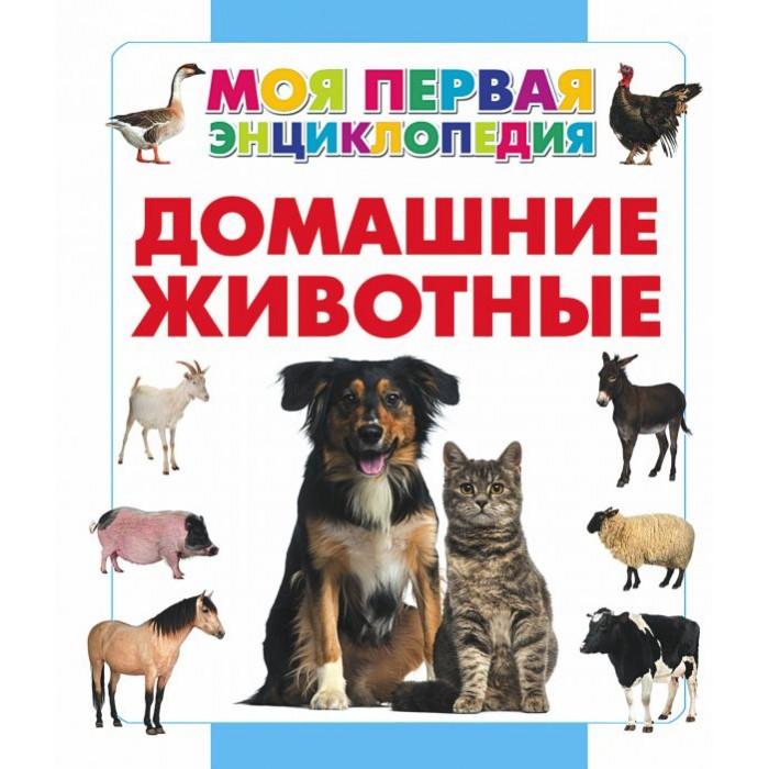 Энциклопедии Издательство АСТ Книга Домашние животные раннее развитие издательство аст книга домашние животные