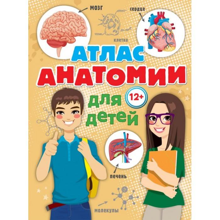 Купить Энциклопедии, Издательство АСТ Книга Атлас анатомии для детей