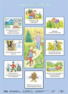 Обучающие плакаты Мозаика-Синтез Обучающий плакат Зачем люди ходят в лес