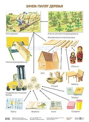Обучающие плакаты Мозаика-Синтез Обучающий плакат Зачем пилят деревья