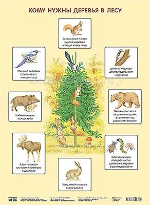 Обучающие плакаты Мозаика-Синтез Обучающий плакат Кому нужны деревья в лесу