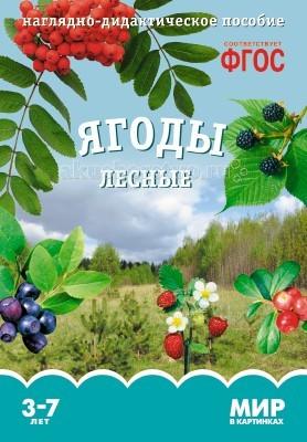 Раннее развитие Мозаика-Синтез Мир в картинках Ягоды лесные творог растишка лесные ягоды персик груша 3 5