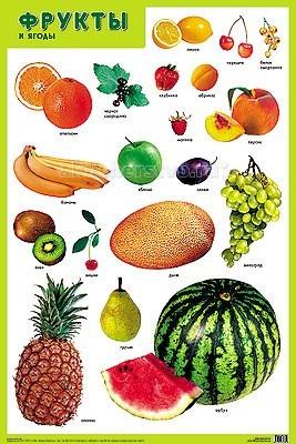 Обучающие плакаты Мозаика-Синтез Обучающий плакат Фрукты и ягоды
