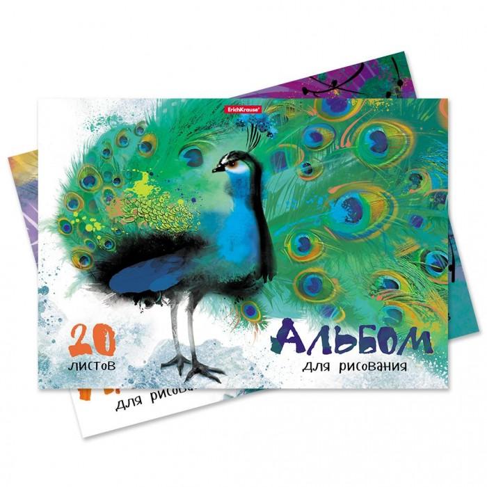 Принадлежности для рисования Erich Krause Альбом на клею Птицы жарких стран А4 20 листов