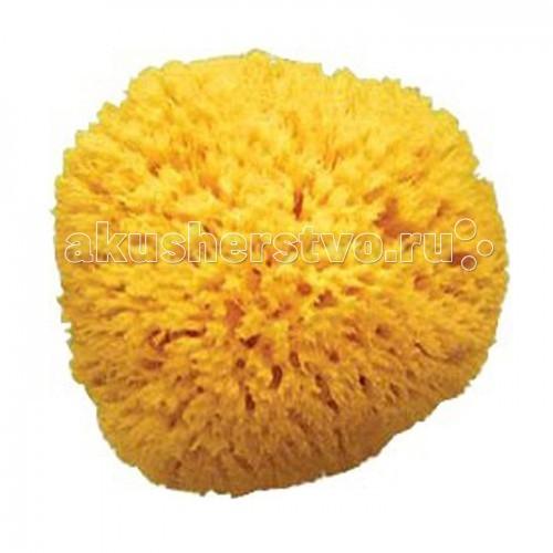 Мочалка Ok Baby Honeycomb 12 см