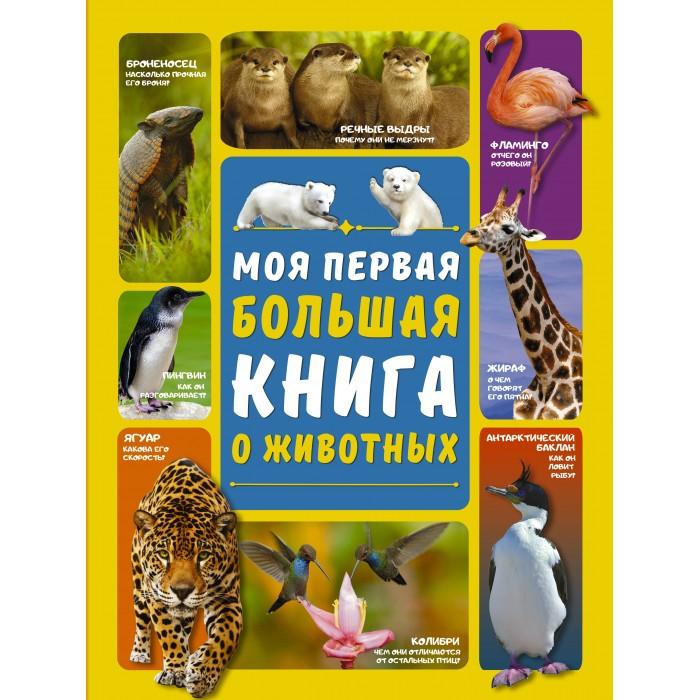 Обучающие книги Издательство АСТ Моя первая большая книга о животных ксения львовна красильникова о себе с точностью до… моя первая книга стихов…