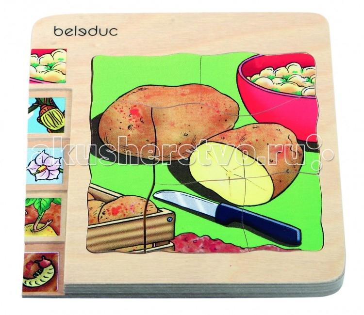 Деревянные игрушки Beleduc Развивающий Пазл Картофель 17043