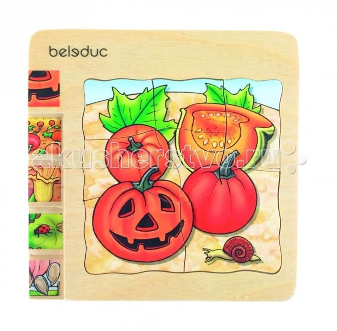 Деревянные игрушки Beleduc Развивающий Пазл Тыква 17051 поиск семена тыква марсельеза
